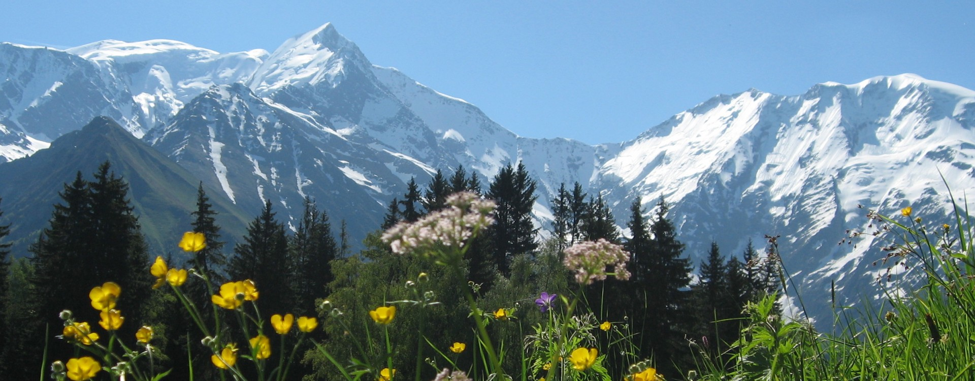View of Mont Blanc from the hike from Le Bettex to Saint Nicholas de Veroce